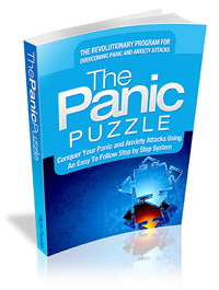The Panic Puzzle Review